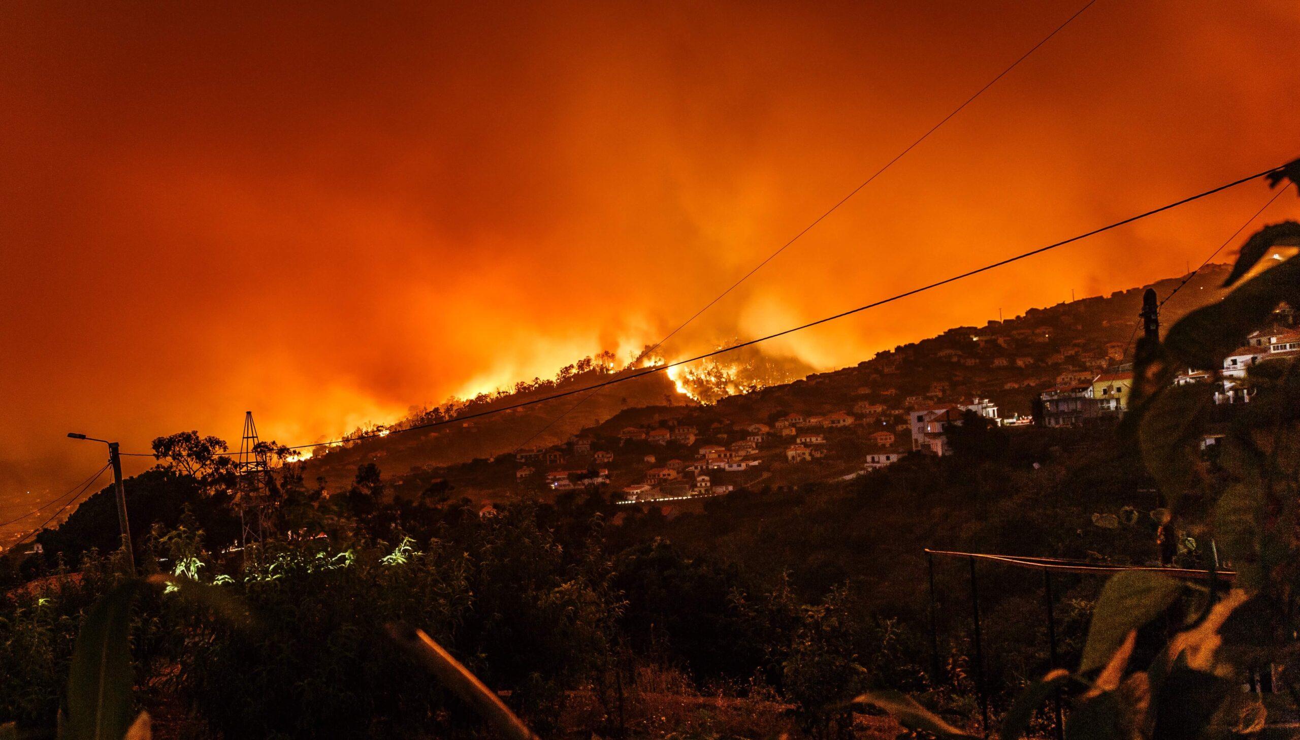 Incendio forestal en Estreito da Calheta, Portugal. Créditos: Michael Held